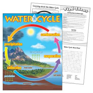 Water Cycle Learning Chart